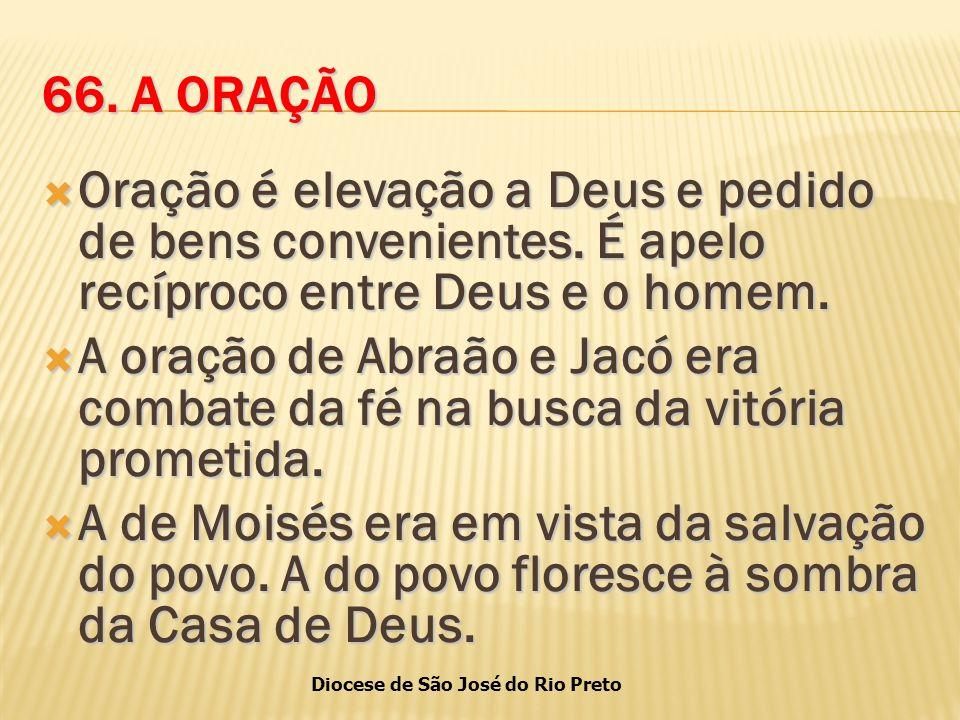 Diocese de São José do Rio Preto 66.