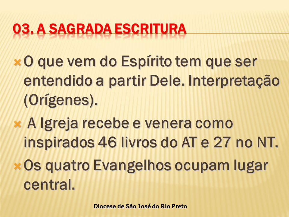 Diocese de São José do Rio Preto  O que vem do Espírito tem que ser entendido a partir Dele.