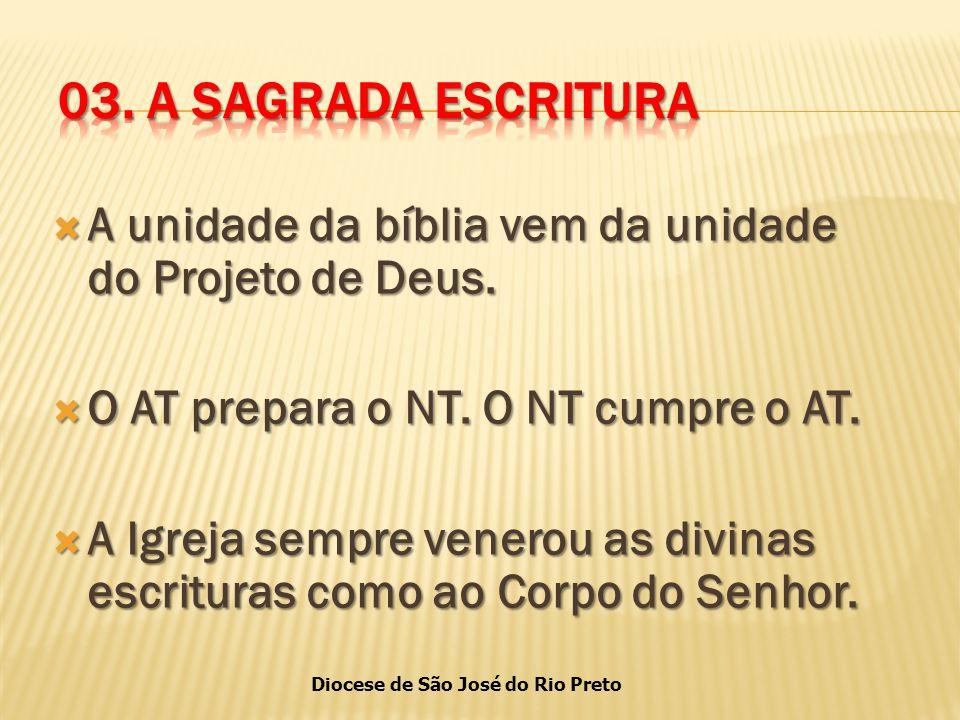 Diocese de São José do Rio Preto  A unidade da bíblia vem da unidade do Projeto de Deus.