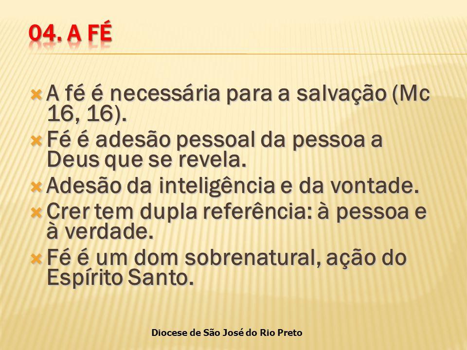 Diocese de São José do Rio Preto  A fé é necessária para a salvação (Mc 16, 16).
