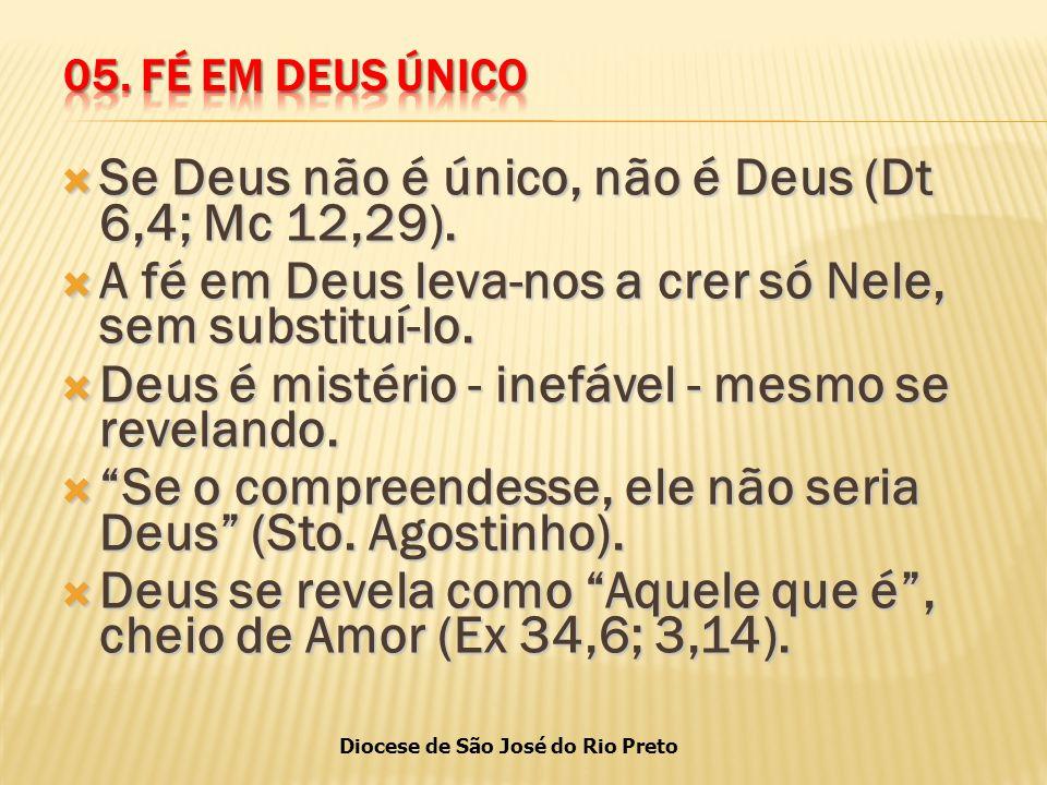 Diocese de São José do Rio Preto  Se Deus não é único, não é Deus (Dt 6,4; Mc 12,29).