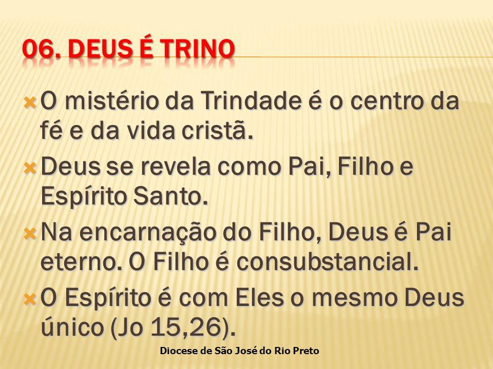 Diocese de São José do Rio Preto  O mistério da Trindade é o centro da fé e da vida cristã.