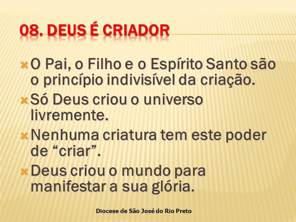 Diocese de São José do Rio Preto  O Pai, o Filho e o Espírito Santo são o princípio indivisível da criação.
