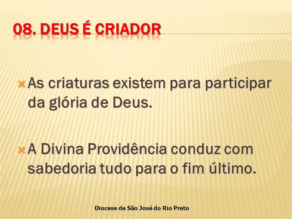 Diocese de São José do Rio Preto  As criaturas existem para participar da glória de Deus.