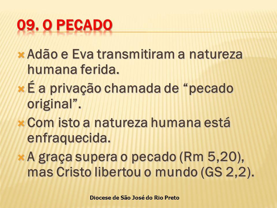 Diocese de São José do Rio Preto  Adão e Eva transmitiram a natureza humana ferida.