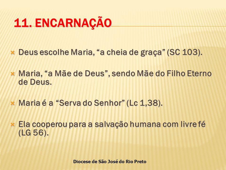 Diocese de São José do Rio Preto 11.ENCARNAÇÃO  Deus escolhe Maria, a cheia de graça (SC 103).