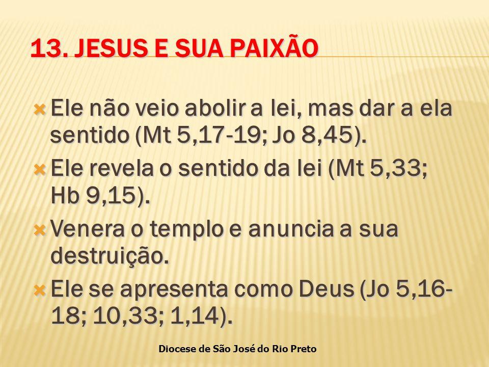 Diocese de São José do Rio Preto 13.