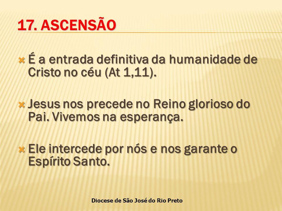 Diocese de São José do Rio Preto 17.