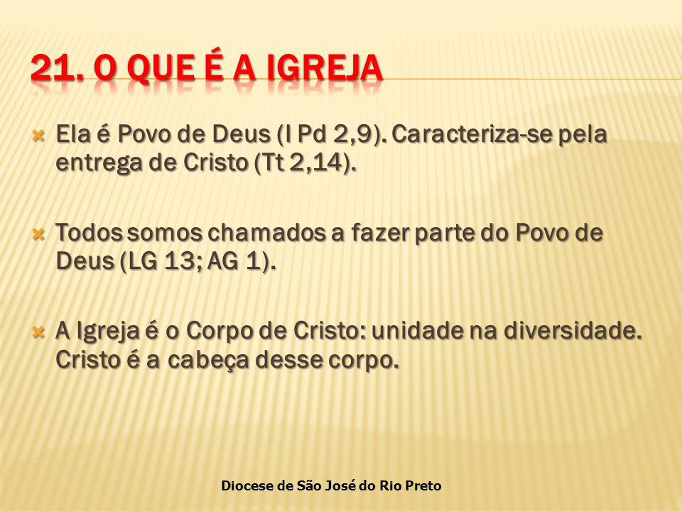 Diocese de São José do Rio Preto  Ela é Povo de Deus (I Pd 2,9).