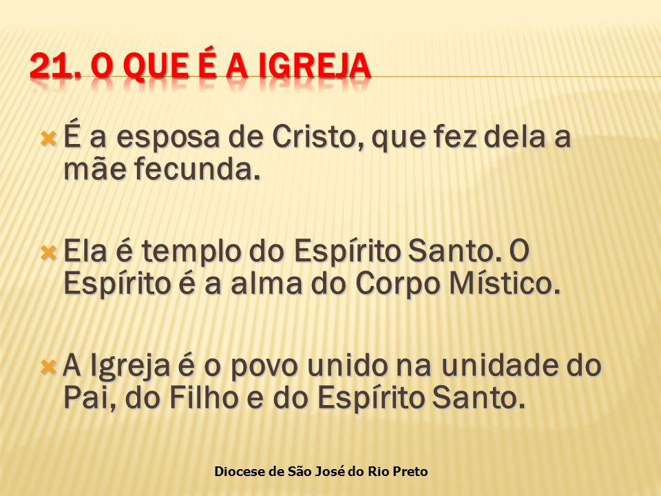 Diocese de São José do Rio Preto  É a esposa de Cristo, que fez dela a mãe fecunda.