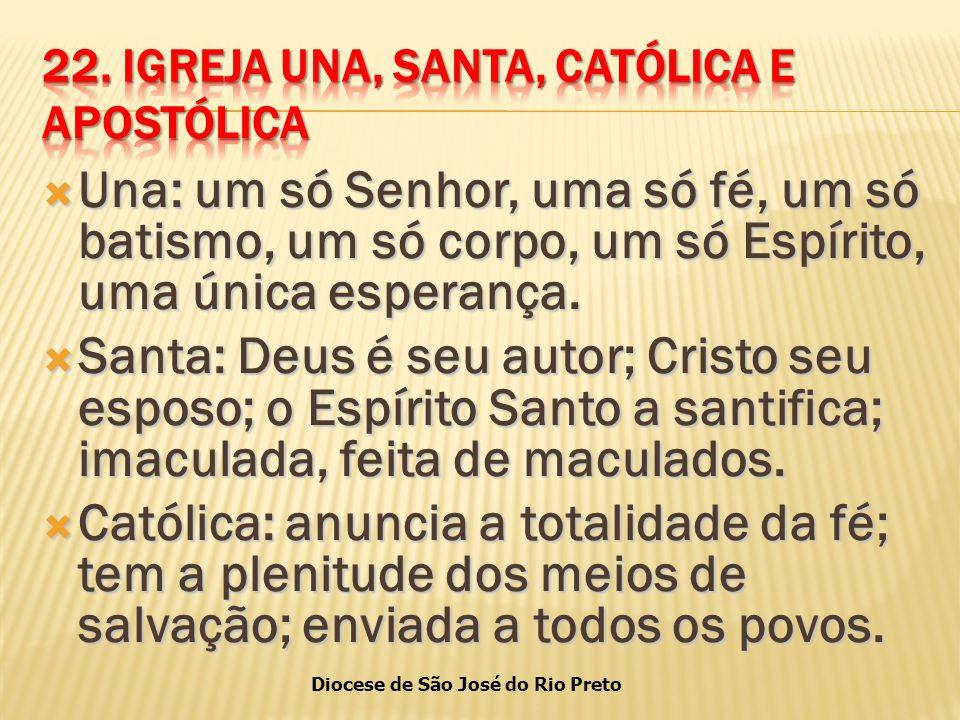 Diocese de São José do Rio Preto  Una: um só Senhor, uma só fé, um só batismo, um só corpo, um só Espírito, uma única esperança.
