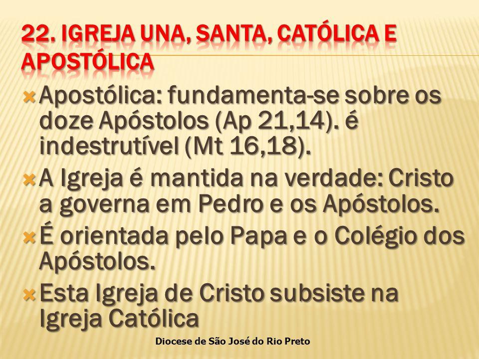 Diocese de São José do Rio Preto  Apostólica: fundamenta-se sobre os doze Apóstolos (Ap 21,14).