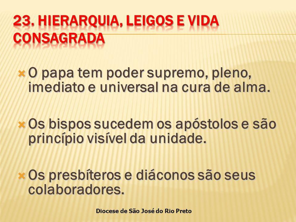 Diocese de São José do Rio Preto  O papa tem poder supremo, pleno, imediato e universal na cura de alma.
