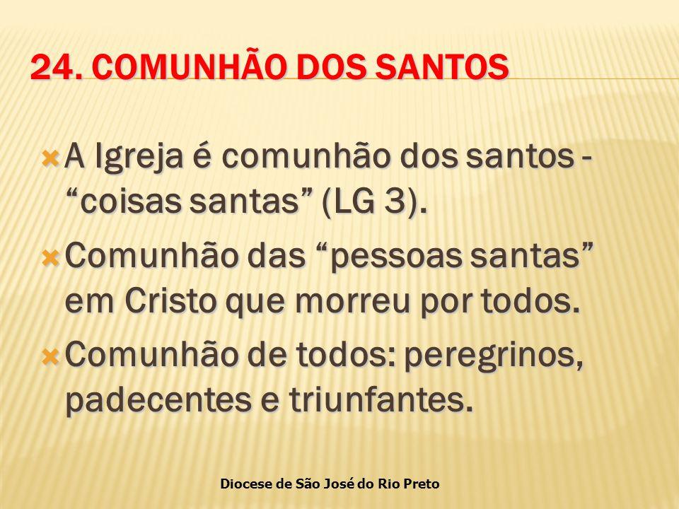 Diocese de São José do Rio Preto 24.