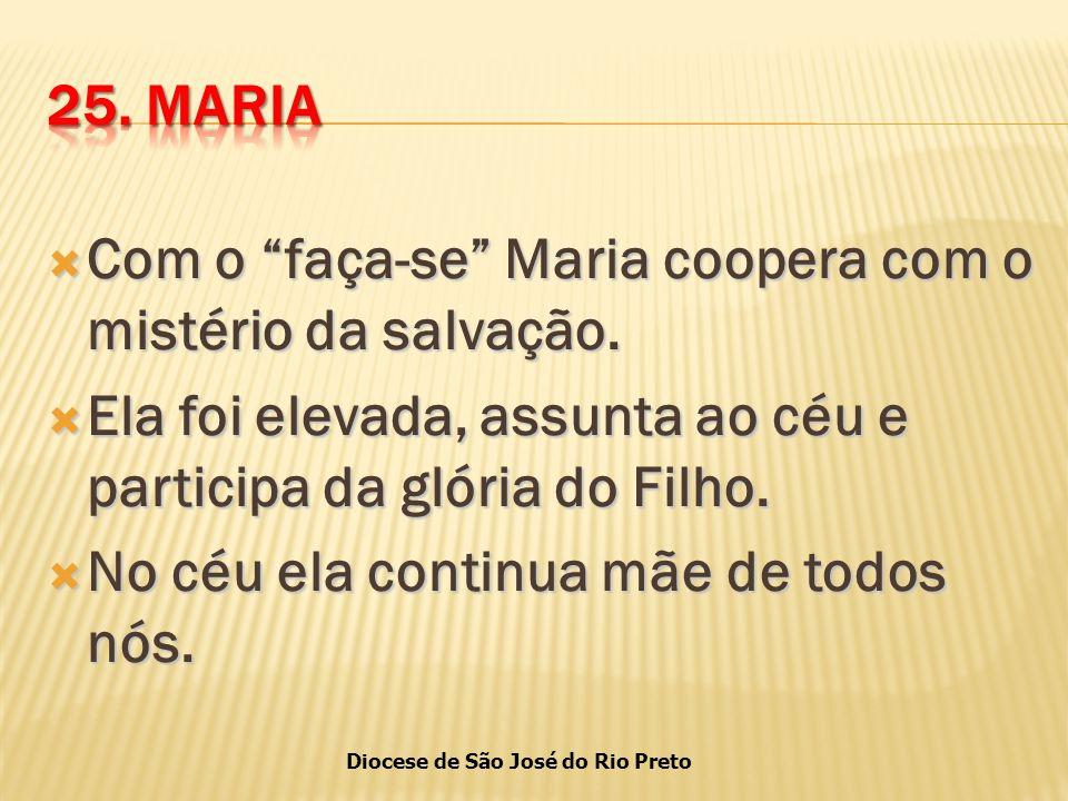 Diocese de São José do Rio Preto  Com o faça-se Maria coopera com o mistério da salvação.