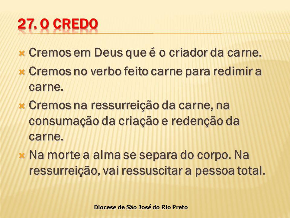 Diocese de São José do Rio Preto  Cremos em Deus que é o criador da carne.