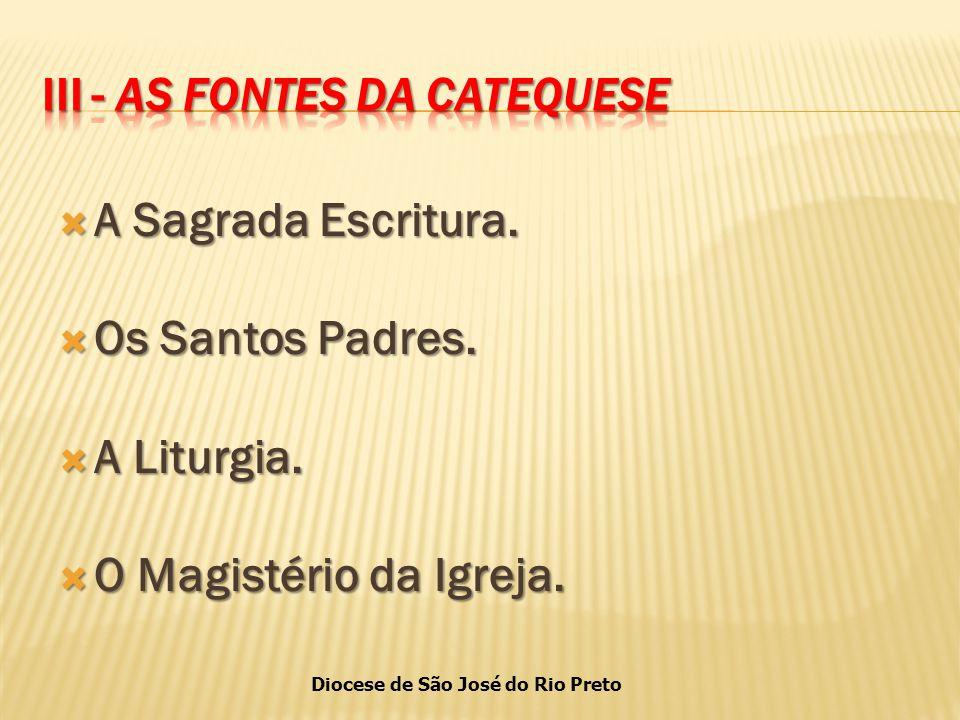 Diocese de São José do Rio Preto  A Sagrada Escritura.