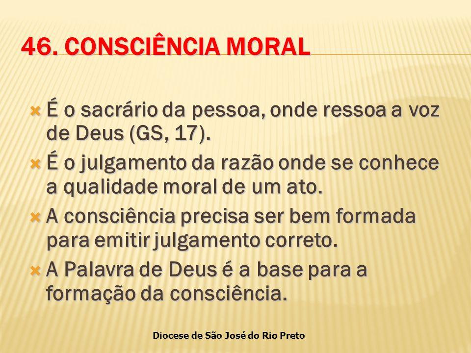 Diocese de São José do Rio Preto 46.