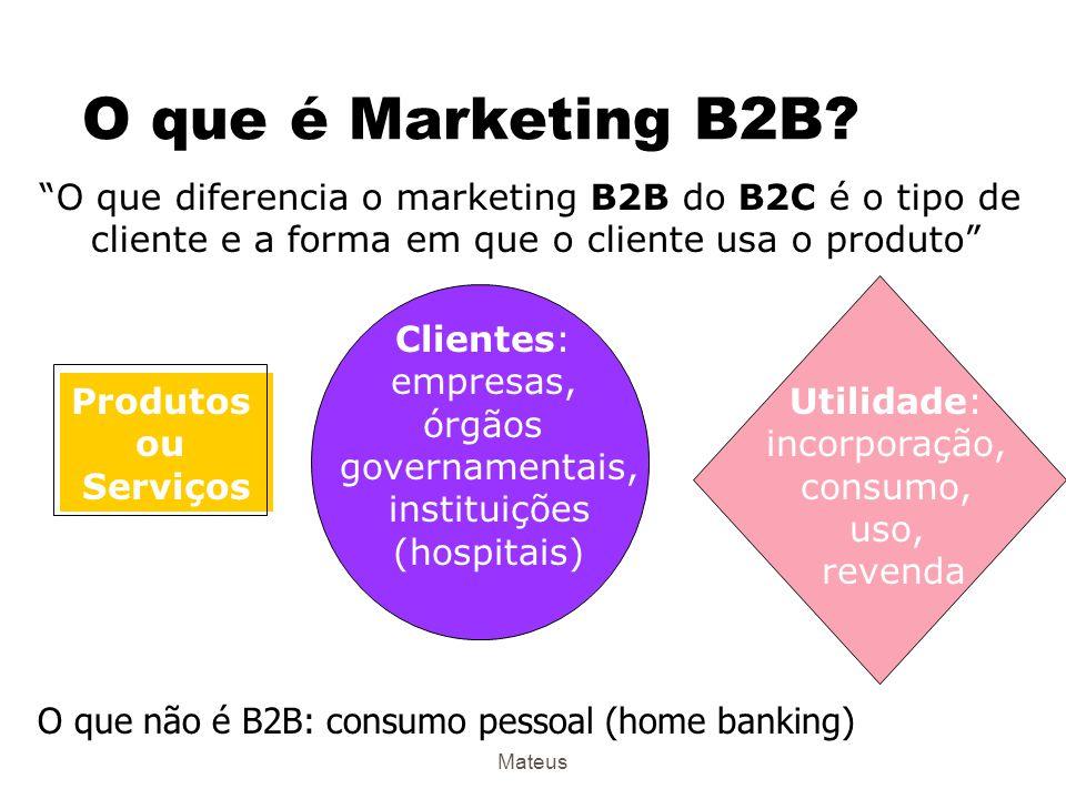 Mateus Internet, B2B e B2C