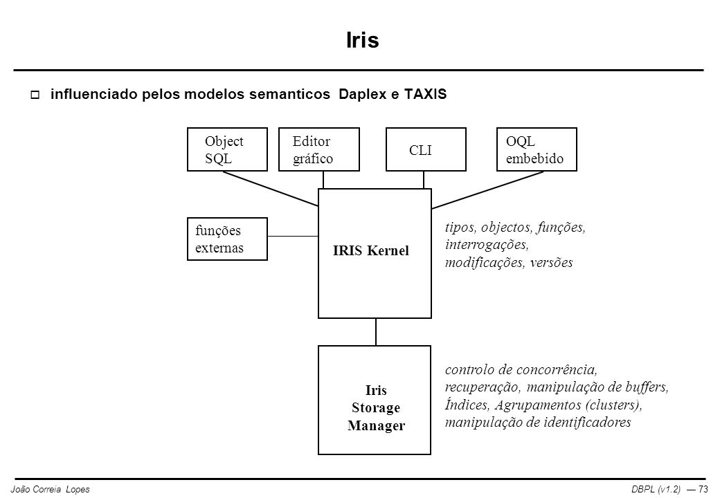 DBPL (v1.2) — 73João Correia Lopes funções externas Object SQL Editor gráfico CLI OQL embebido IRIS Kernel Iris Storage Manager tipos, objectos, funções, interrogações, modificações, versões controlo de concorrência, recuperação, manipulação de buffers, Índices, Agrupamentos (clusters), manipulação de identificadores Iris  influenciado pelos modelos semanticos Daplex e TAXIS