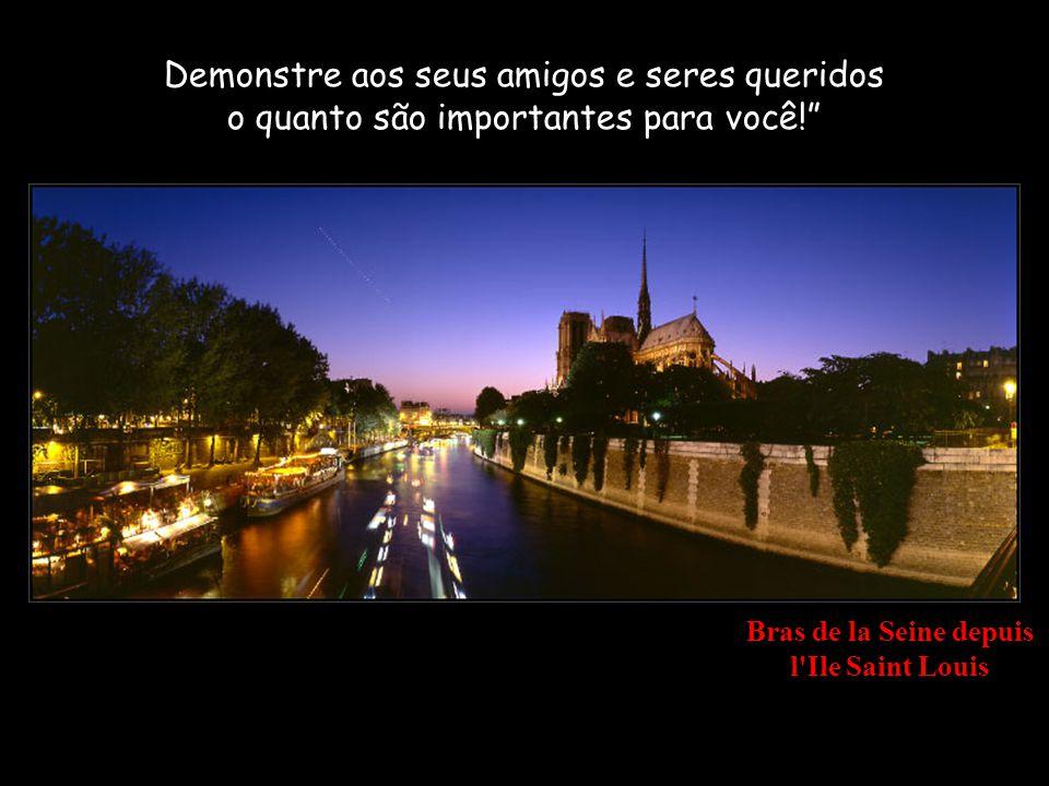 Notre-Dame de Paris depuis le Pont de l Archevéché Você não será recordado pelos seus pensamentos secretos.