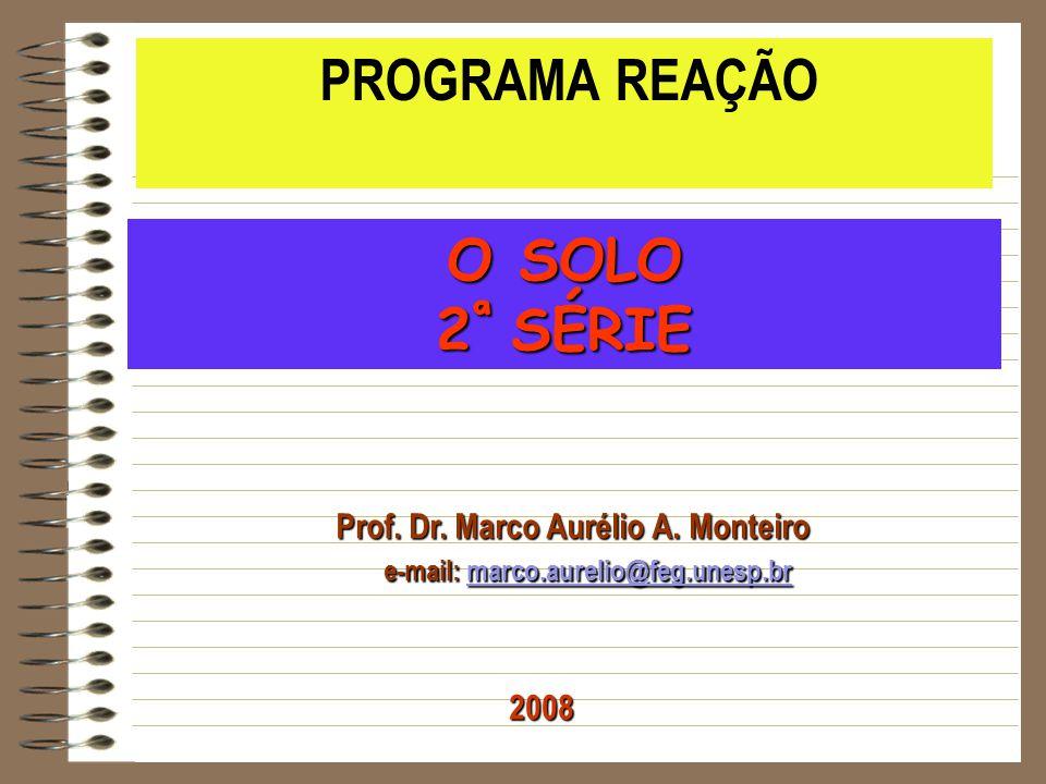 Prof. Dr. Marco Aurélio A. Monteiro e-mail: marco.aurelio@feg.unesp.br e-mail: marco.aurelio@feg.unesp.brmarco.aurelio@feg.unesp.br PROGRAMA REAÇÃO O