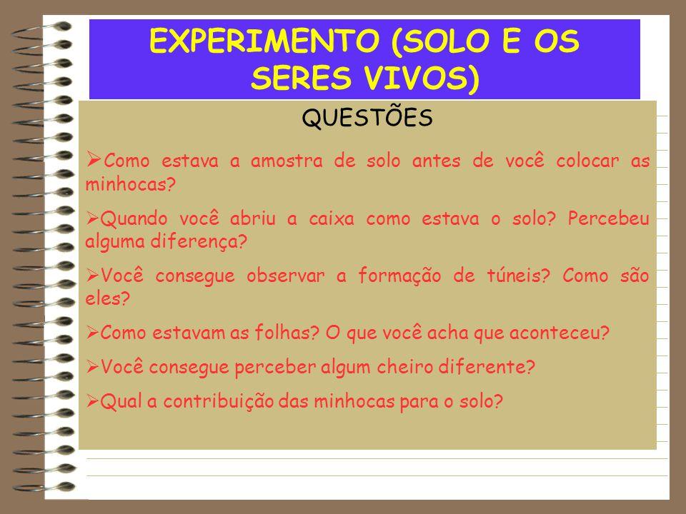 EXPERIMENTO (SOLO E OS SERES VIVOS) QUESTÕES  Como estava a amostra de solo antes de você colocar as minhocas?  Quando você abriu a caixa como estav