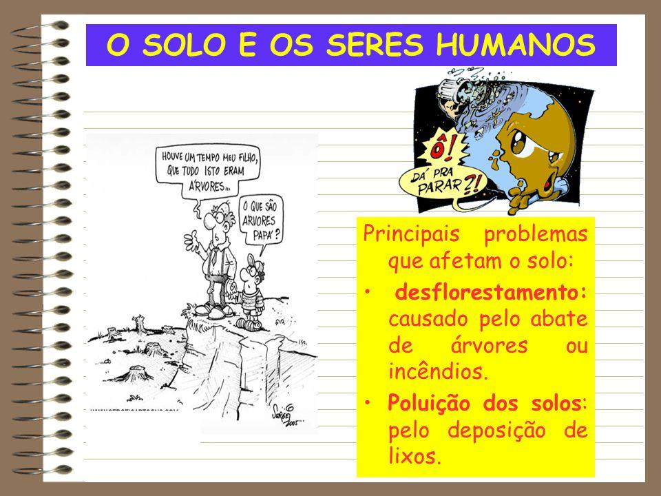 O SOLO E OS SERES HUMANOS Principais problemas que afetam o solo: desflorestamento: causado pelo abate de árvores ou incêndios. Poluição dos solos: pe