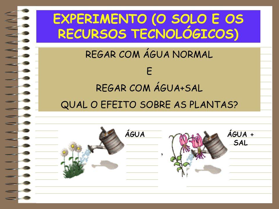 EXPERIMENTO (O SOLO E OS RECURSOS TECNOLÓGICOS) REGAR COM ÁGUA NORMAL E REGAR COM ÁGUA+SAL QUAL O EFEITO SOBRE AS PLANTAS?, ÁGUAÁGUA + SAL