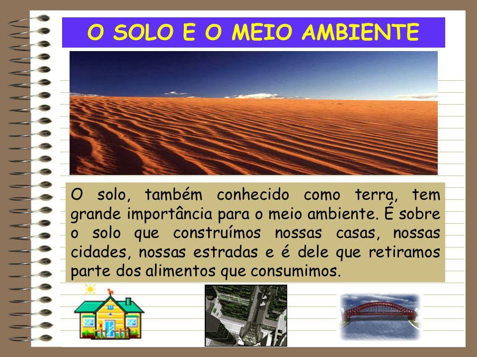 O SOLO E O MEIO AMBIENTE O solo, também conhecido como terra, tem grande importância para o meio ambiente. É sobre o solo que construímos nossas casas