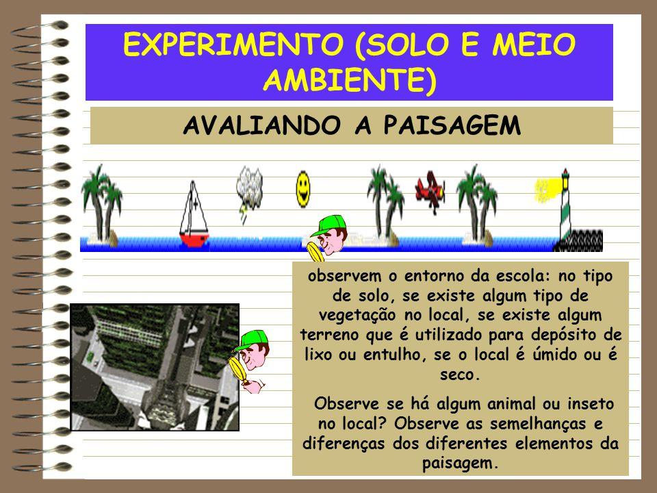 EXPERIMENTO (SOLO E MEIO AMBIENTE) AVALIANDO A PAISAGEM observem o entorno da escola: no tipo de solo, se existe algum tipo de vegetação no local, se