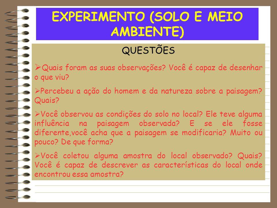 EXPERIMENTO (SOLO E MEIO AMBIENTE) QUESTÕES  Quais foram as suas observações.
