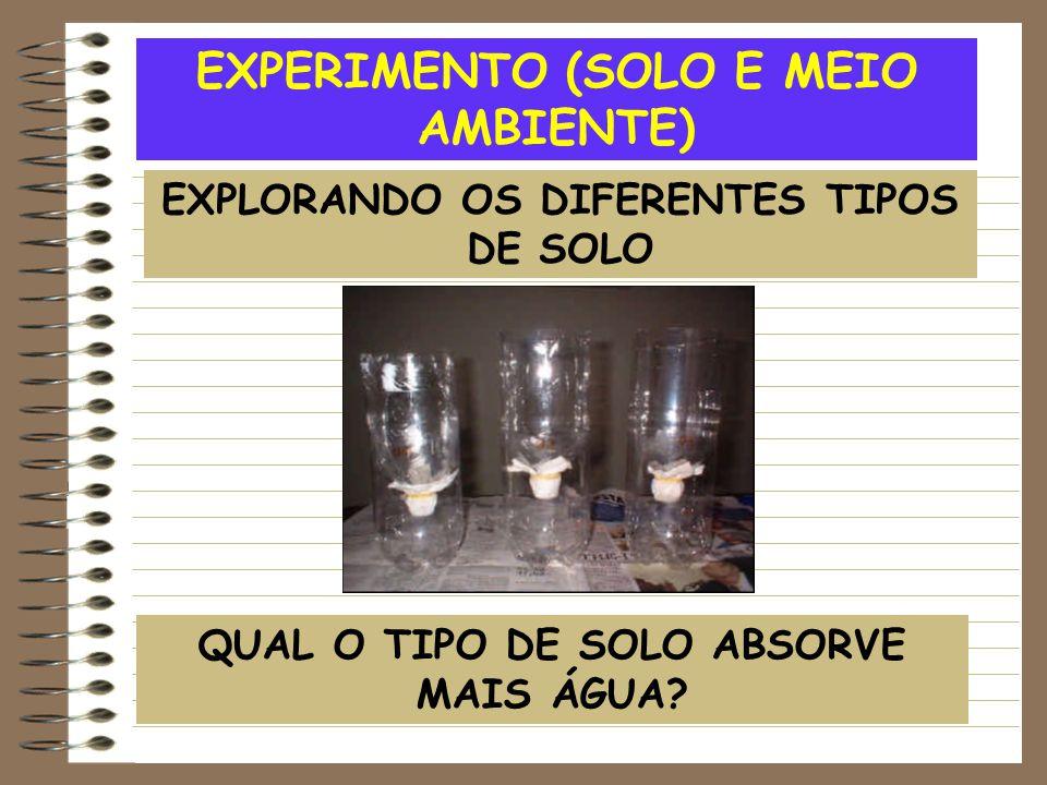 EXPERIMENTO (SOLO E MEIO AMBIENTE) EXPLORANDO OS DIFERENTES TIPOS DE SOLO QUAL O TIPO DE SOLO ABSORVE MAIS ÁGUA?