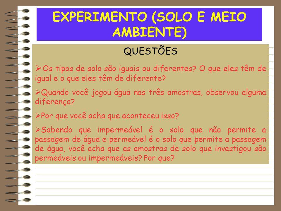 EXPERIMENTO (SOLO E MEIO AMBIENTE) QUESTÕES  Os tipos de solo são iguais ou diferentes? O que eles têm de igual e o que eles têm de diferente?  Quan