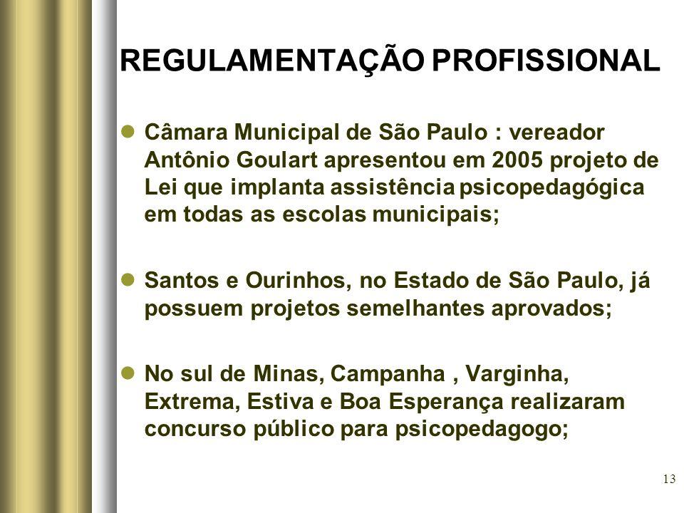 13 REGULAMENTAÇÃO PROFISSIONAL Câmara Municipal de São Paulo : vereador Antônio Goulart apresentou em 2005 projeto de Lei que implanta assistência psi