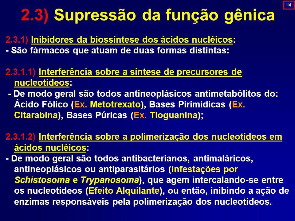2.3.1) Inibidores da biossíntese dos ácidos nucléicos: - São fármacos que atuam de duas formas distintas: 2.3.1.1) Interferência sobre a síntese de pr