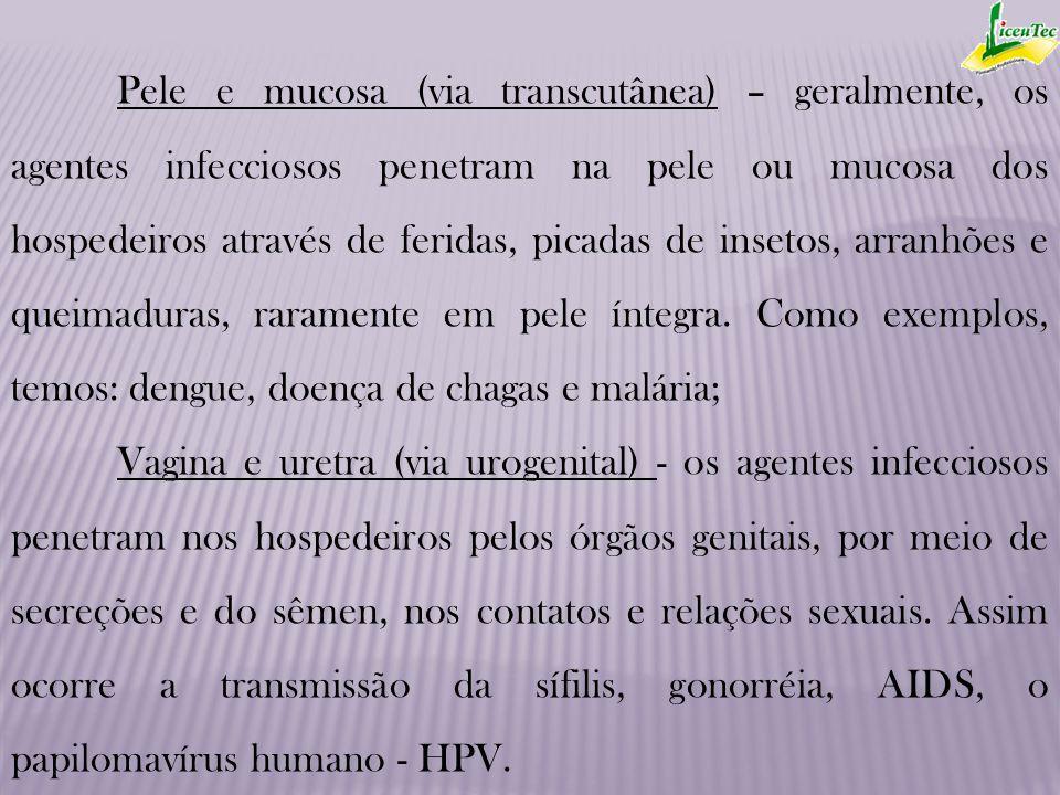Pele e mucosa (via transcutânea) – geralmente, os agentes infecciosos penetram na pele ou mucosa dos hospedeiros através de feridas, picadas de inseto