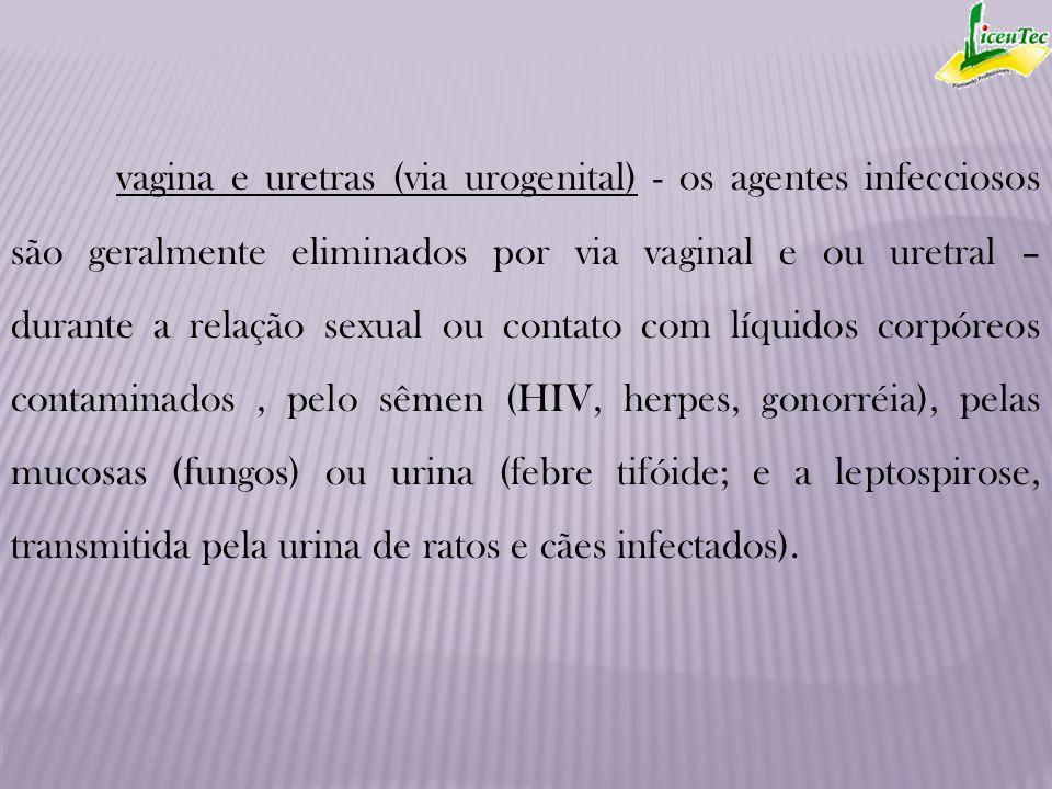 vagina e uretras (via urogenital) - os agentes infecciosos são geralmente eliminados por via vaginal e ou uretral – durante a relação sexual ou contat