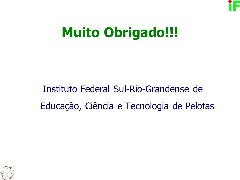 Muito Obrigado!!! Instituto Federal Sul-Rio-Grandense de Educação, Ciência e Tecnologia de Pelotas