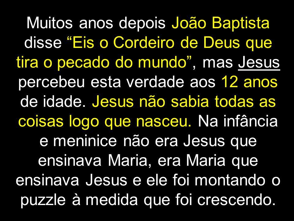 Muitos anos depois João Baptista disse Eis o Cordeiro de Deus que tira o pecado do mundo , mas Jesus percebeu esta verdade aos 12 anos de idade.