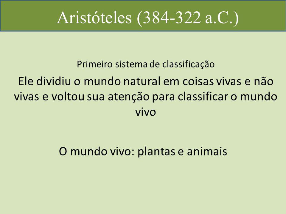 Aristóteles (384-322 a.C.) Primeiro sistema de classificação Ele dividiu o mundo natural em coisas vivas e não vivas e voltou sua atenção para classificar o mundo vivo O mundo vivo: plantas e animais