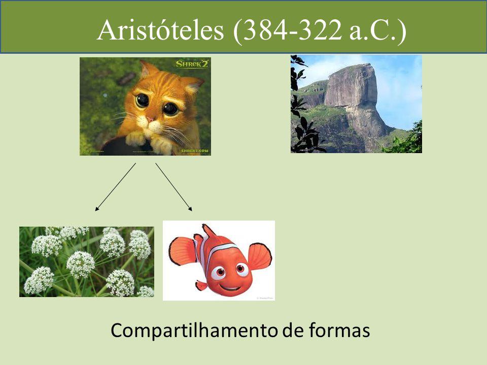 Aristóteles (384-322 a.C.) Compartilhamento de formas