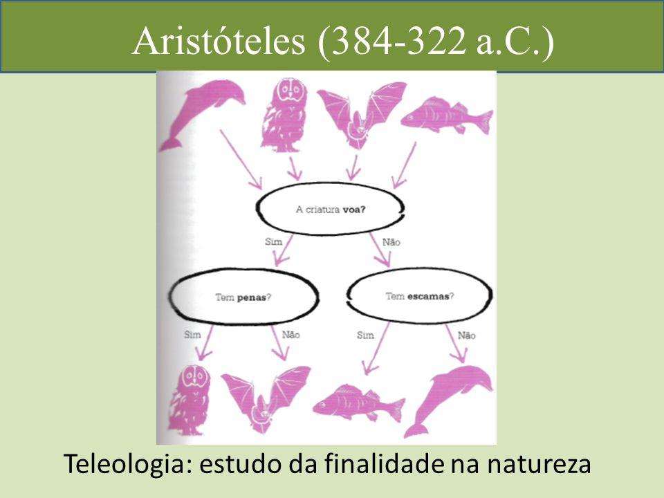 Aristóteles (384-322 a.C.) Teleologia: estudo da finalidade na natureza