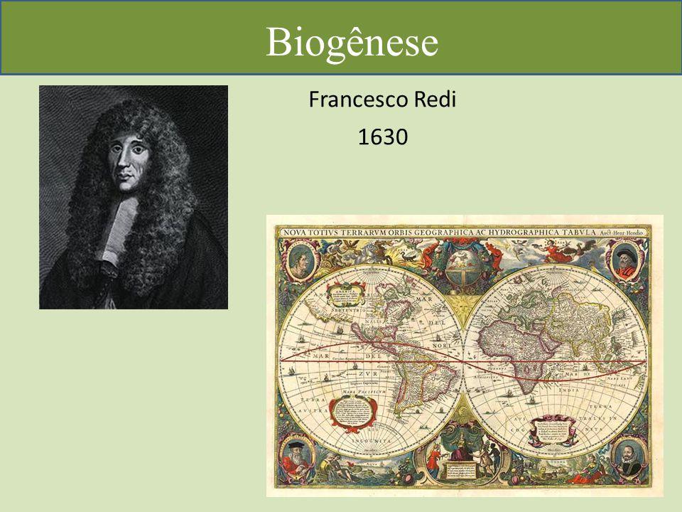 Biogênese Francesco Redi 1630