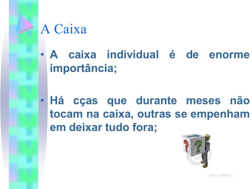 A Caixa A caixa individual é de enorme importância; Há cças que durante meses não tocam na caixa, outras se empenham em deixar tudo fora;