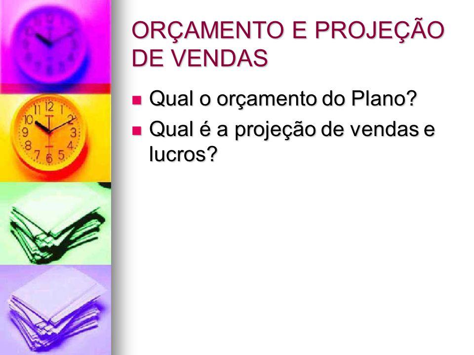 ORÇAMENTO E PROJEÇÃO DE VENDAS Qual o orçamento do Plano.