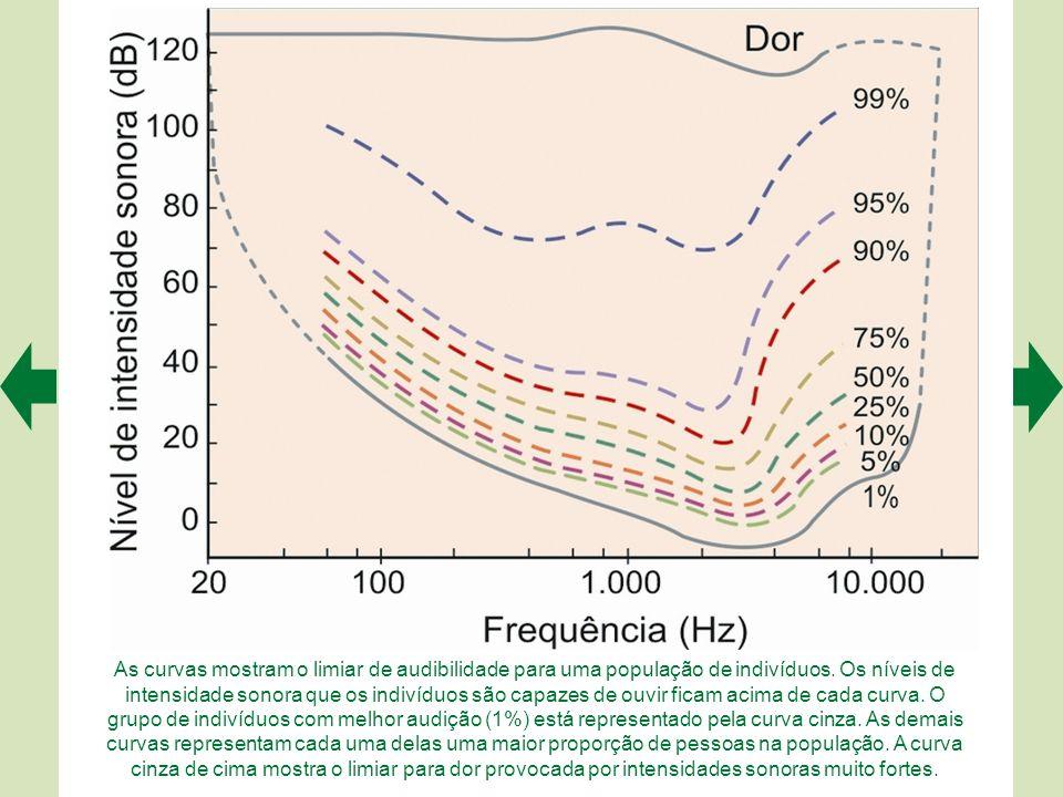 As curvas mostram o limiar de audibilidade para uma população de indivíduos.