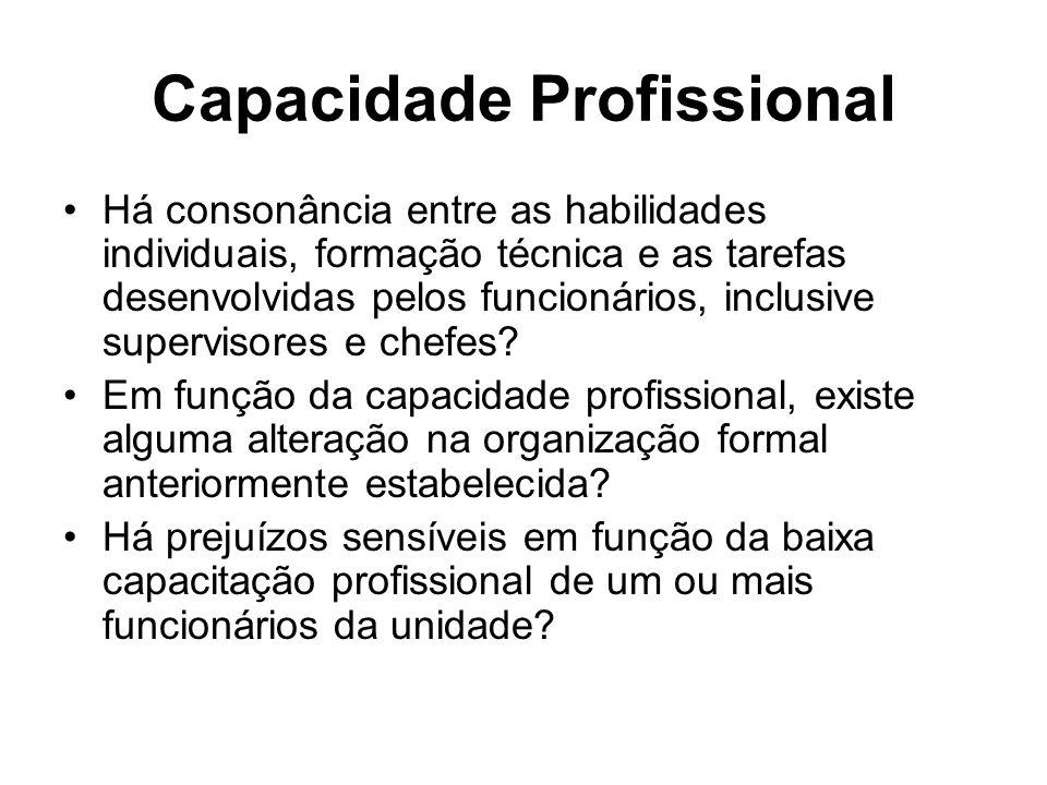 Capacidade Profissional Há consonância entre as habilidades individuais, formação técnica e as tarefas desenvolvidas pelos funcionários, inclusive supervisores e chefes.