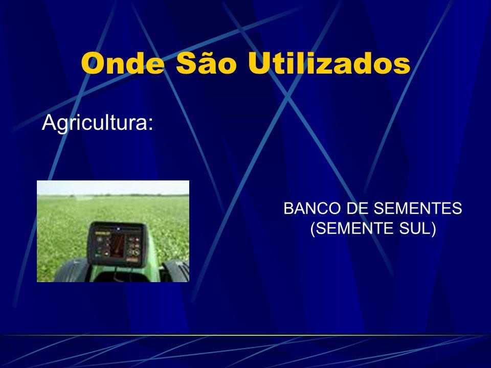 Onde São Utilizados Agricultura: BANCO DE SEMENTES (SEMENTE SUL)