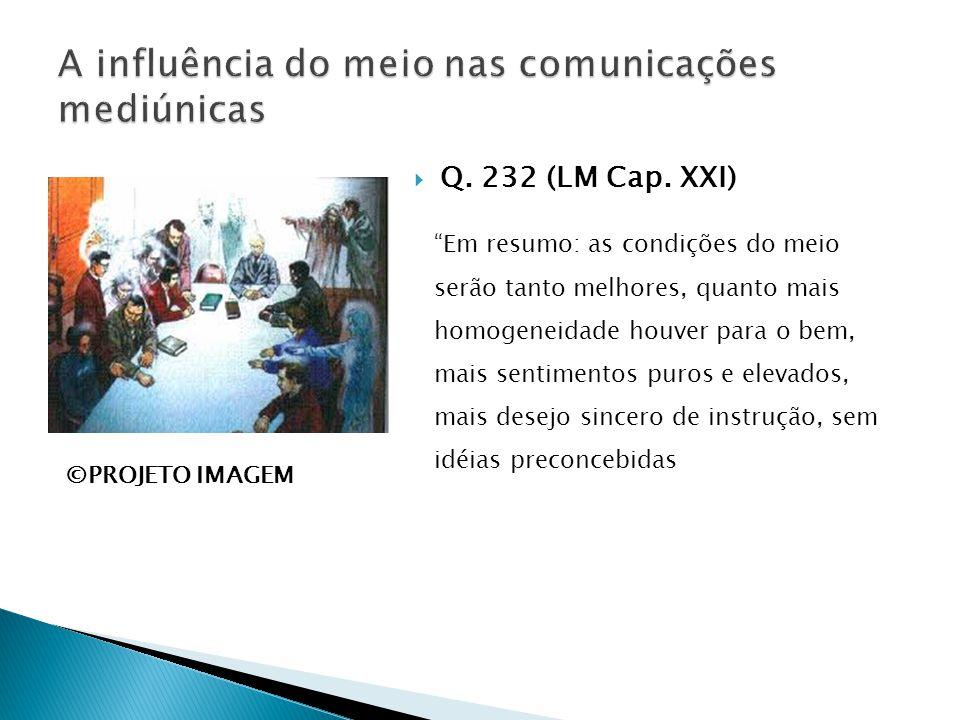 """ Q. 232 (LM Cap. XXI) """"Em resumo: as condições do meio serão tanto melhores, quanto mais homogeneidade houver para o bem, mais sentimentos puros e el"""